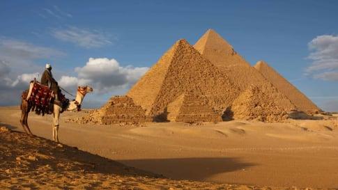 Egypt, Pyramids, Cairo, Camel
