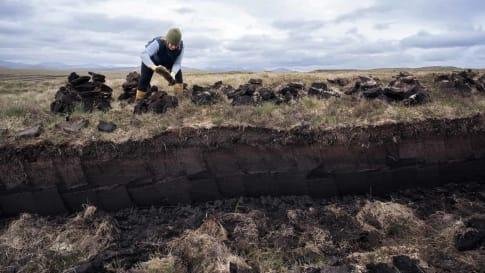 Woman stacking peat blocks