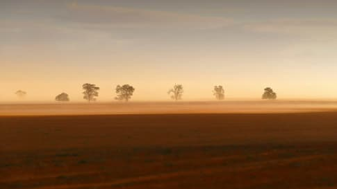 rural farm with crops in paddock in Mallee