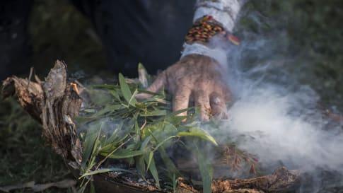Bora Rings: Ancient Aboriginal Ceremonial Grounds