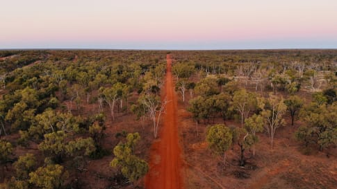 How was Pituri Traded in Ancient Aboriginal Australia?