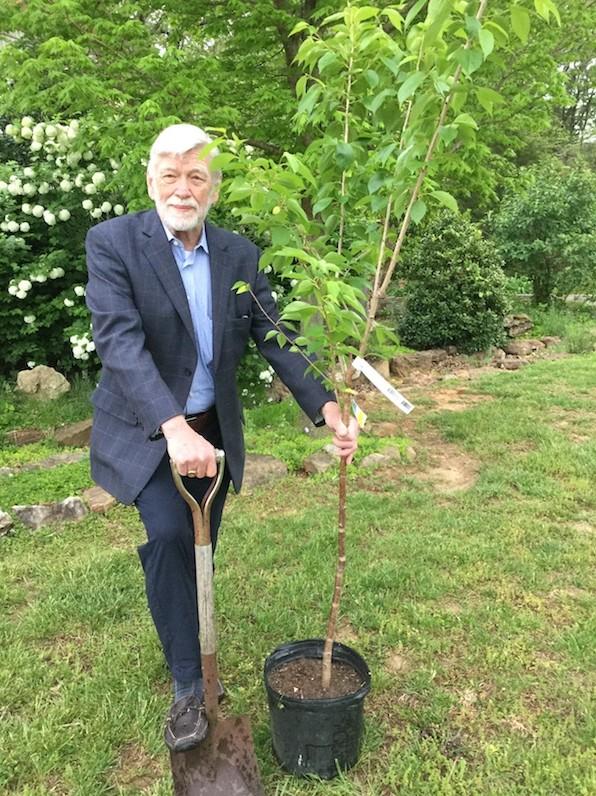 David Roosevelt Tree Planting
