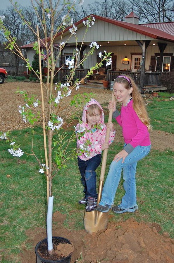 1st BCR Cherry Blossom Planting
