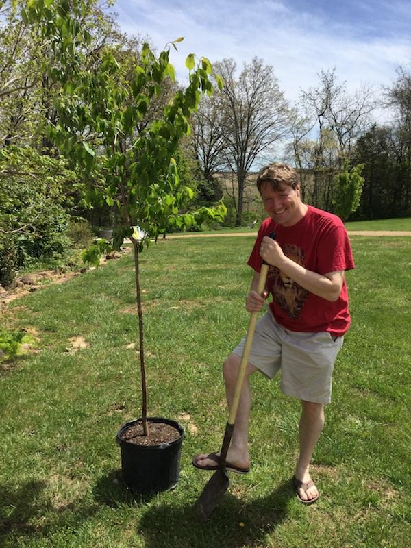 Jonathan Sandys Tree Planting