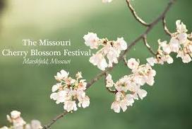 Missouri Cherry Blossom Festival