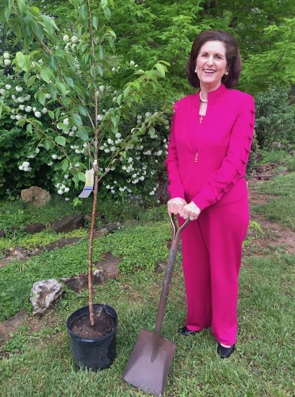 Lynda Johnson Robb Planting