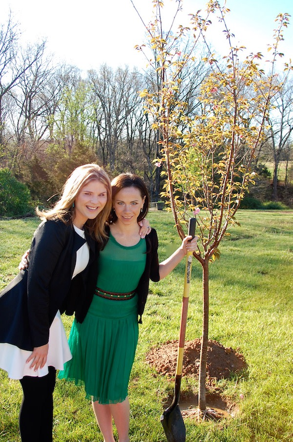 Bush Twins Plant Cherry Tree