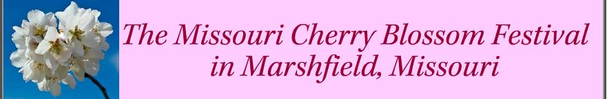 CBF Banner