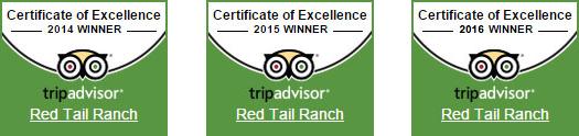 Trip Advisor 2014 2015