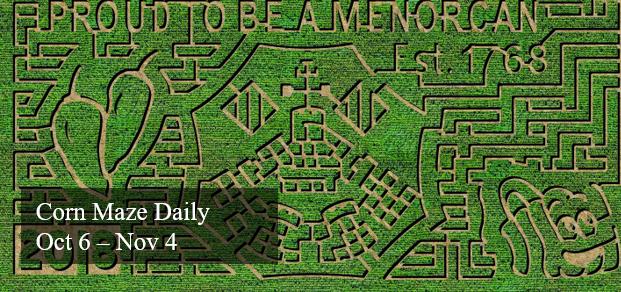 Corn Maze Aerial photo