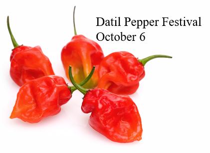 Datil Pepper Festival notice