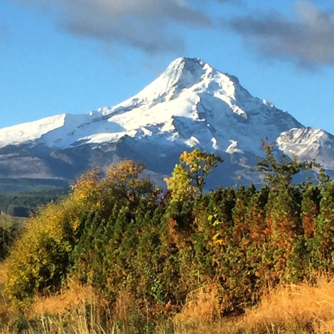 Mt Hood Fall