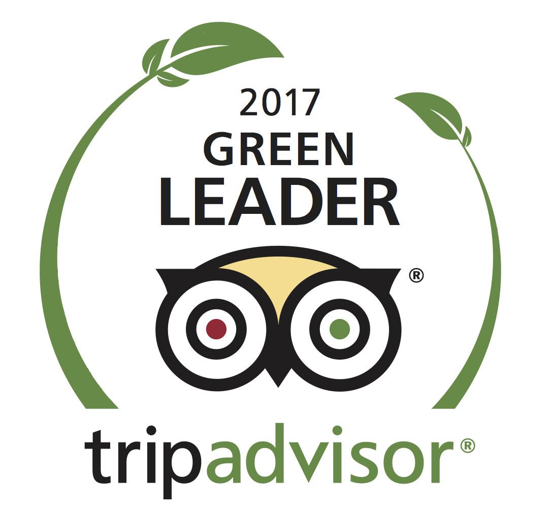 Trip Advisor Green logo