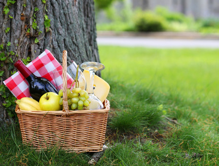 Picnic basket with food and wine in front of tree