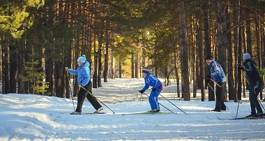 Cross-country skiing in woods