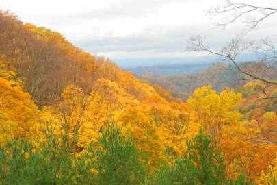 Mountain view with fall color