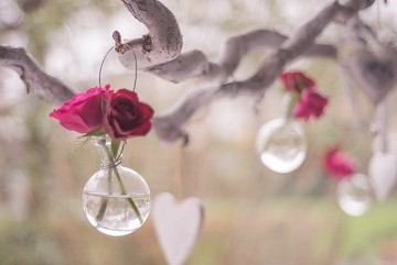 Small bud vase with rose blooms hanging in tree