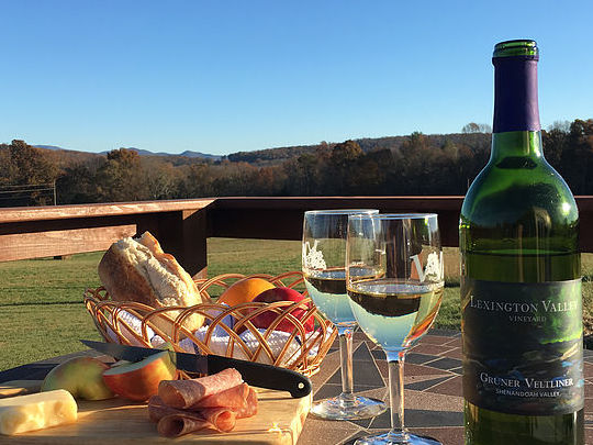 Lexington Valley Vineyard Wine bottle on table with snacks overlooking Shenandoah Valley