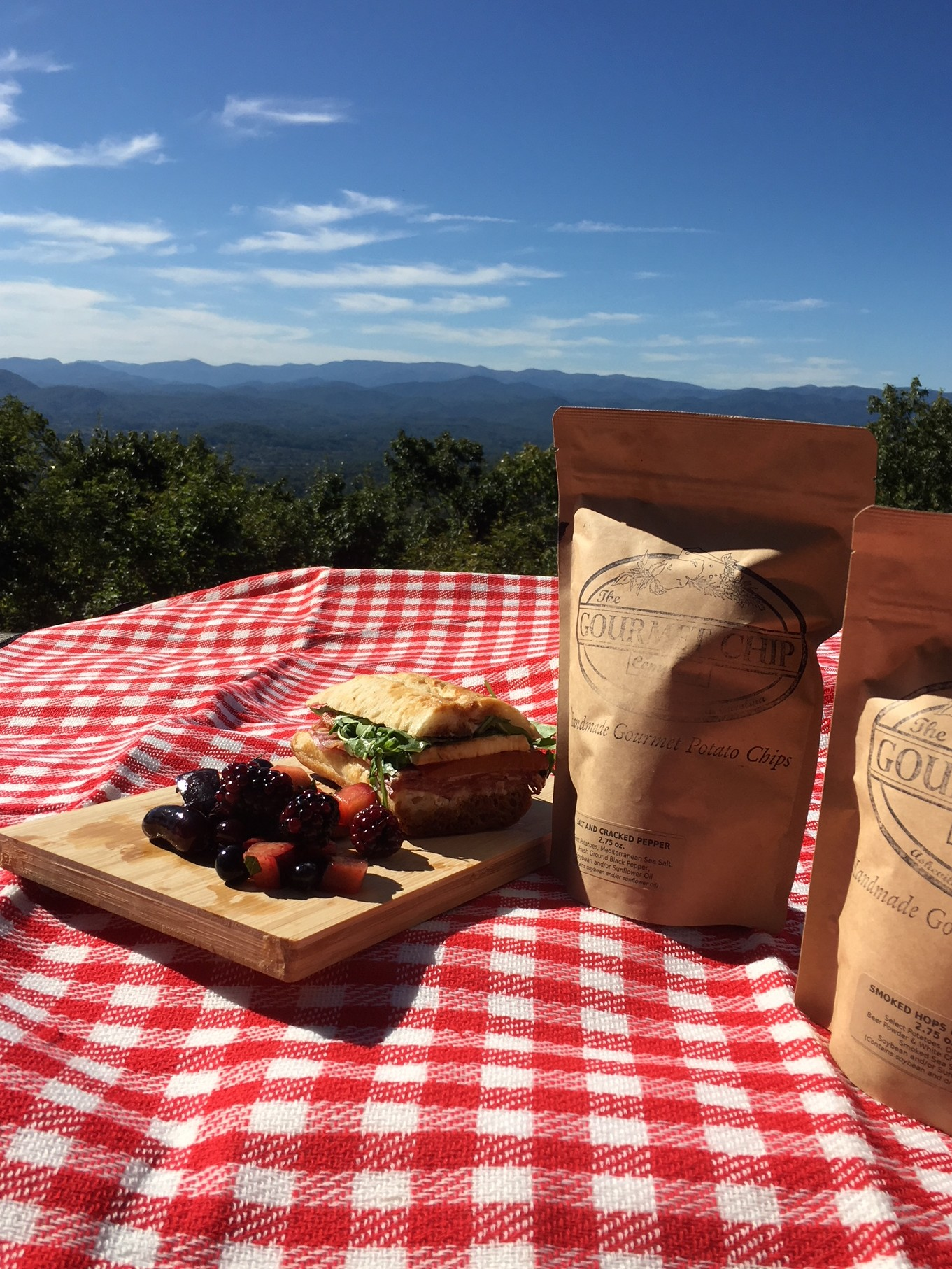 picnic blanket with sandwich, chips, and mountain views