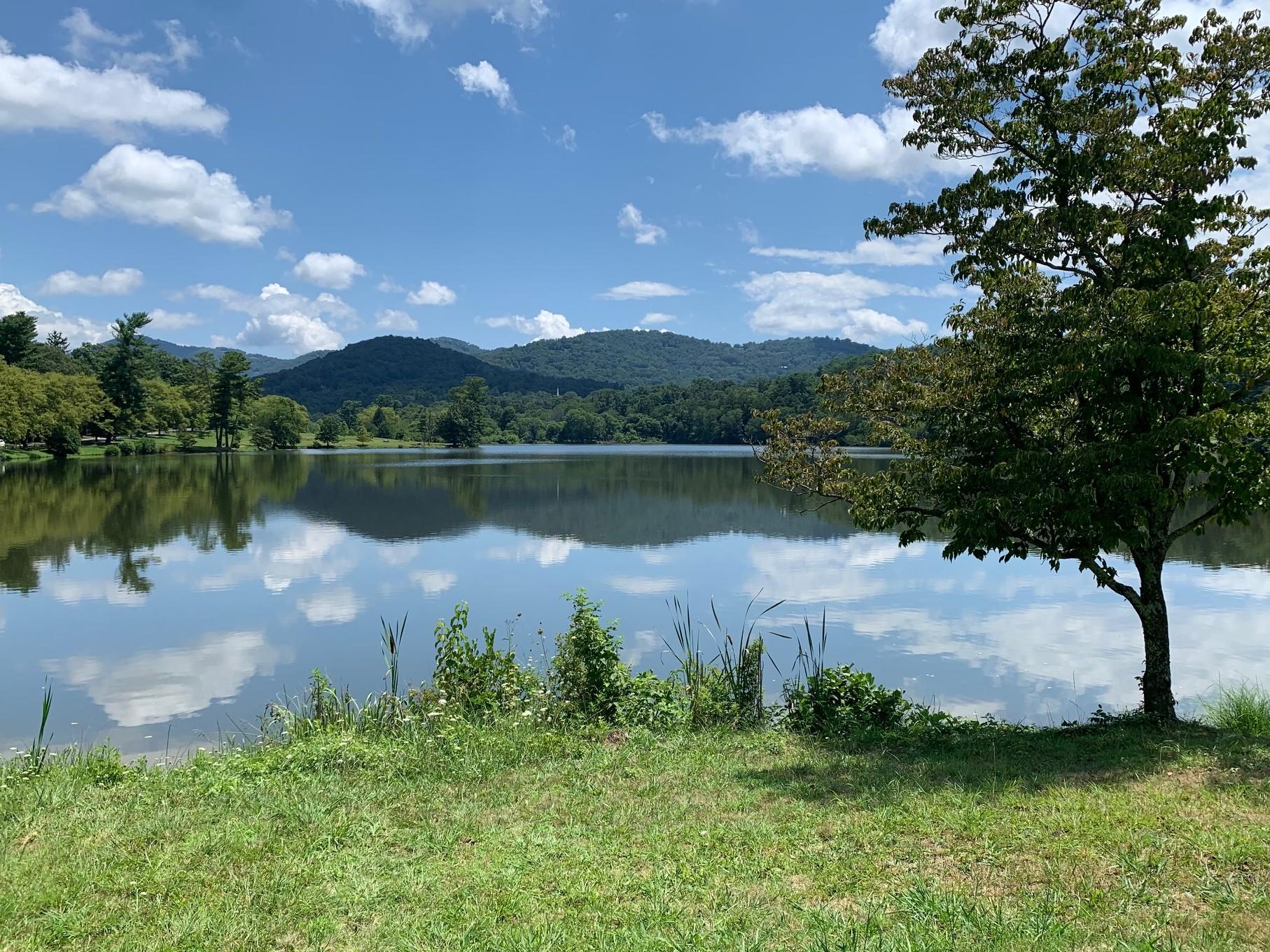 view of Beaver Lake looking North