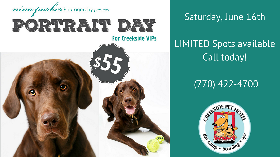 Pet Portrait Day at Creekside Pet Hotel Kennesaw GA