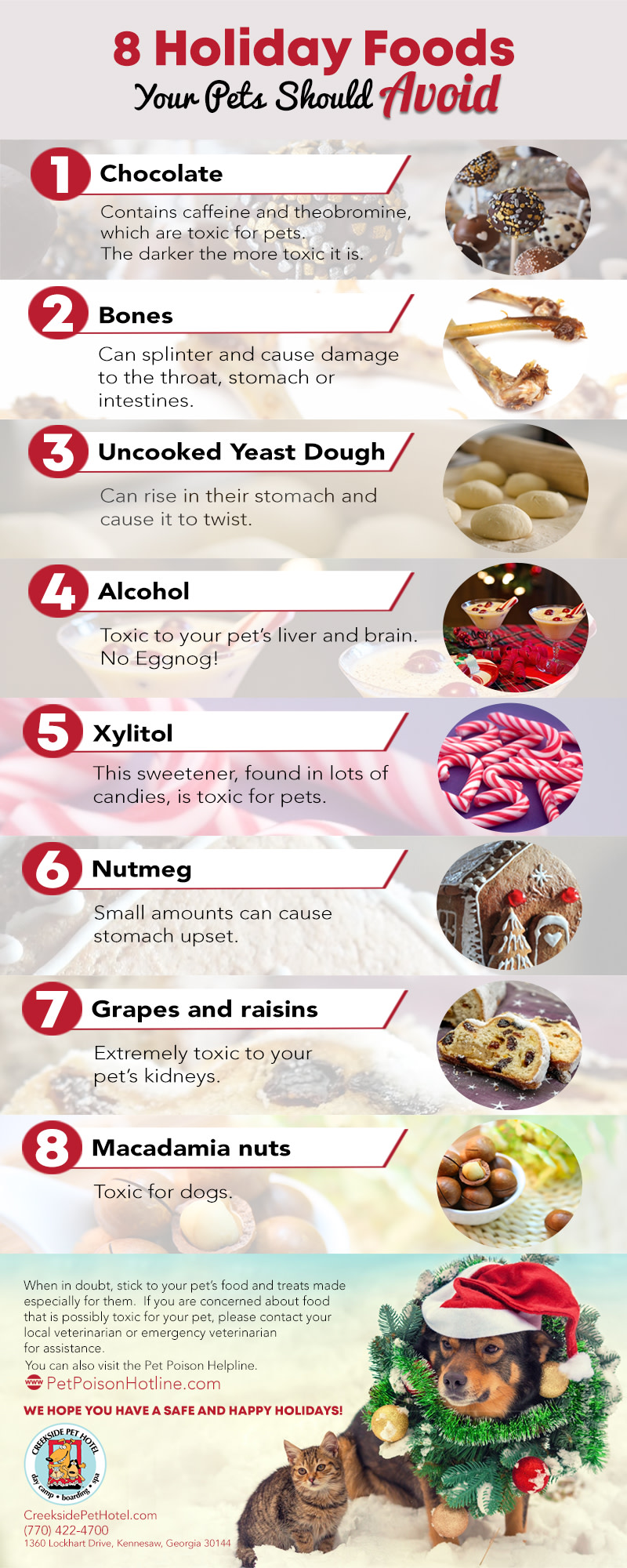 8 Holiday Foods Your Pets Should Avoid Infographic