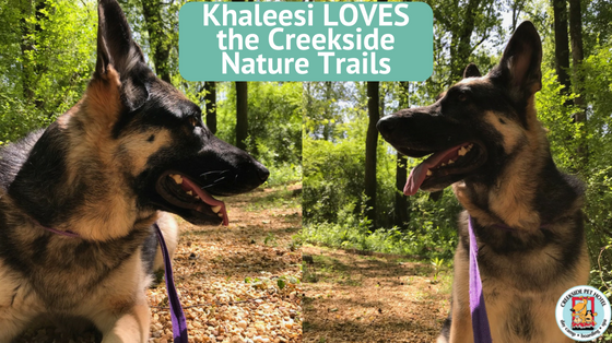 Creekside Pet Hotel Nature Trails in Kennesaw, GA