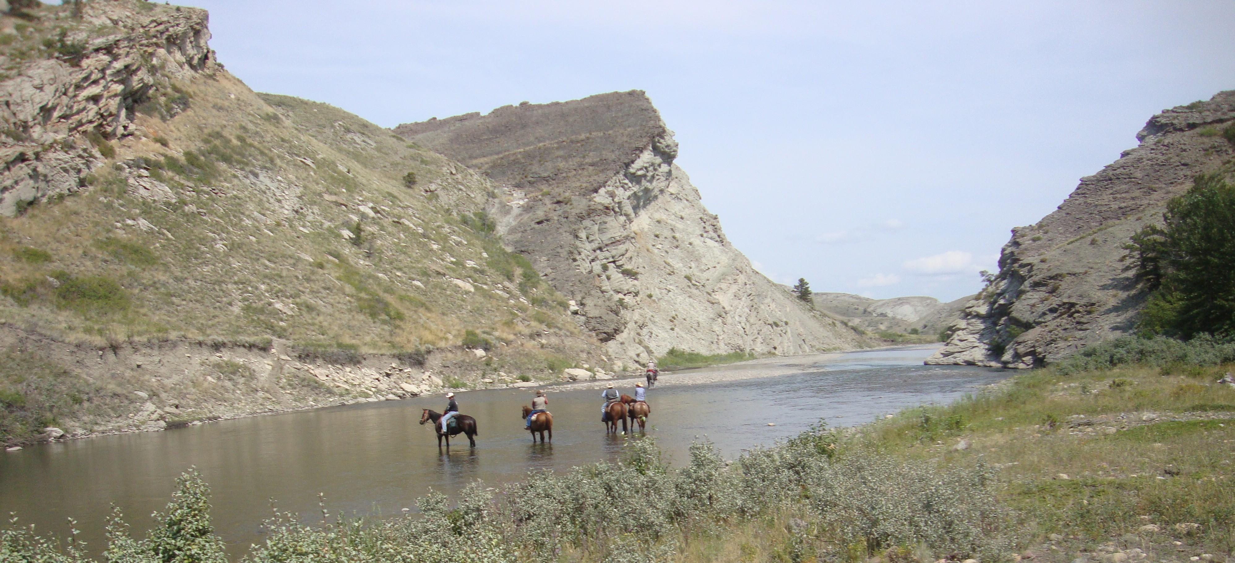 Montana Vacation Ranch Horses