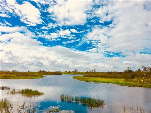 Sawgrass Recreation State Park