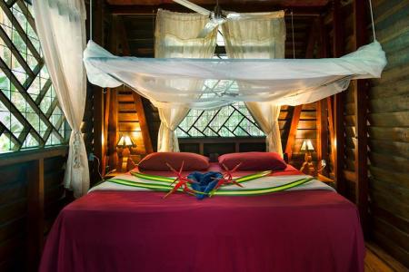 Relax at Congo Bongo Ecolodges