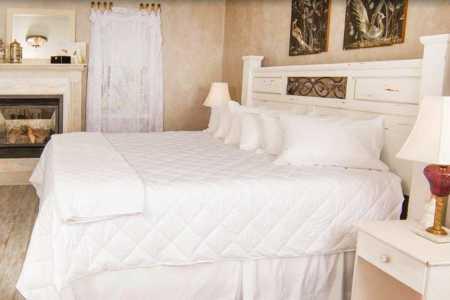 White Birches Bed