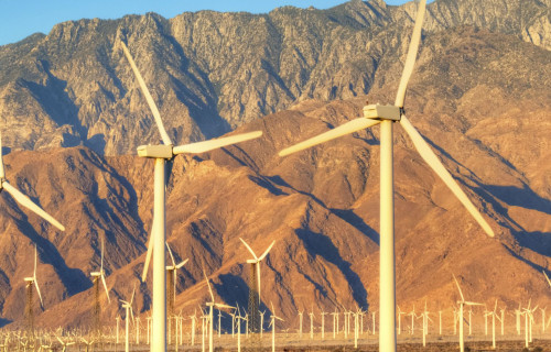 What is There to Do in Palm Springs?