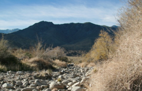 Visit the Beautiful and Historic Palm Springs Indian Canyons