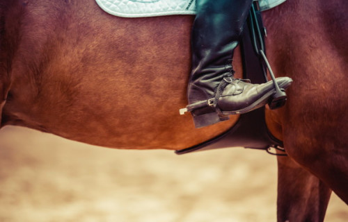 Unique Places For You To Explore With Horseback Riding In The Desert