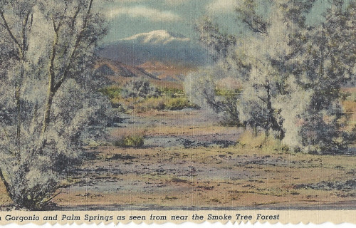 4 Historical Postcards Of Palm Springs, California