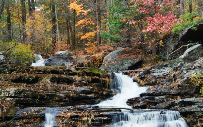 Our Guide to Vermont's Most Scenic Waterfalls Near Shelburne