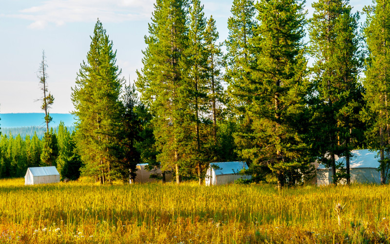 The Perfect Camping Summer Getaway In Yellowstone