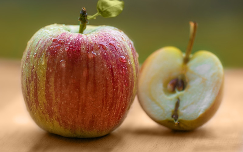 Graves Mountain Apple Harvest