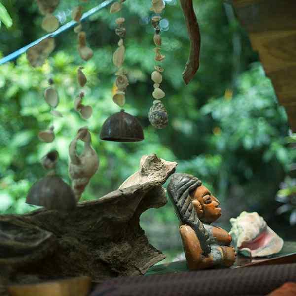 Dream Nature House - Art