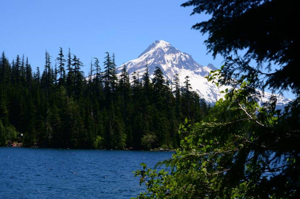 7 Wonderful hikes near Mt Hood