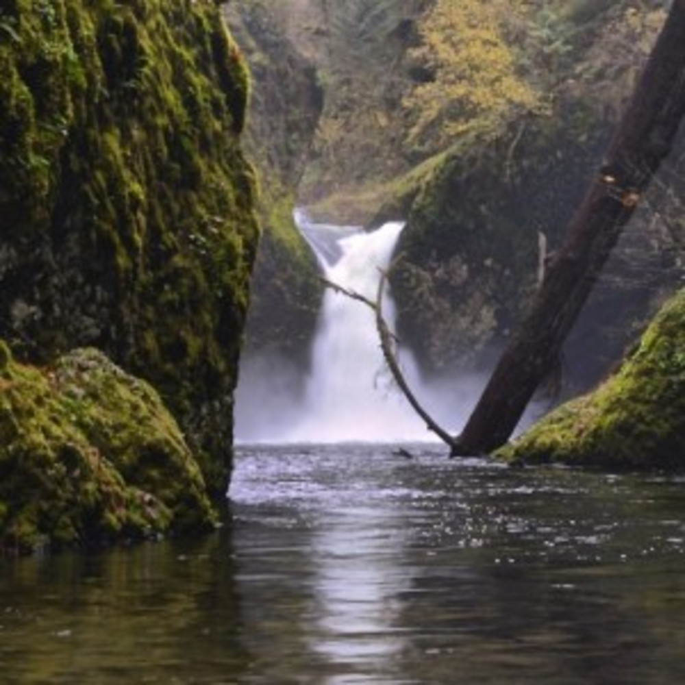 Waterfalls in the Columbia River Gorge