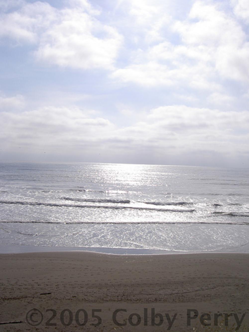 Winter on the Washington Coast