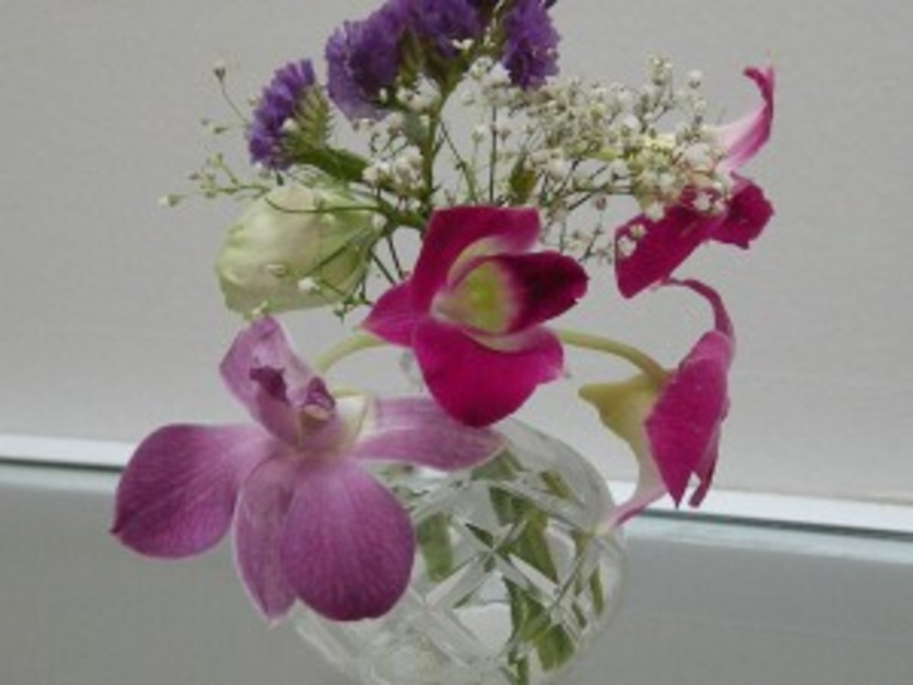 Orchids in the Inn