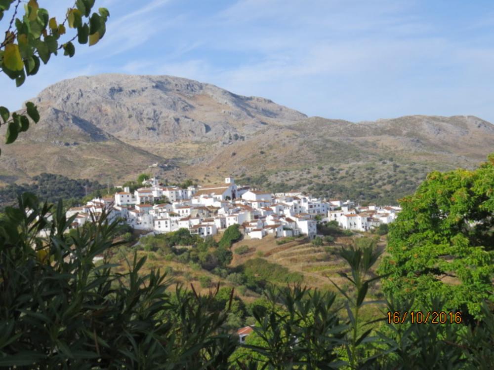 Cartajima: Village of Champions, Fountain of Inspiration?
