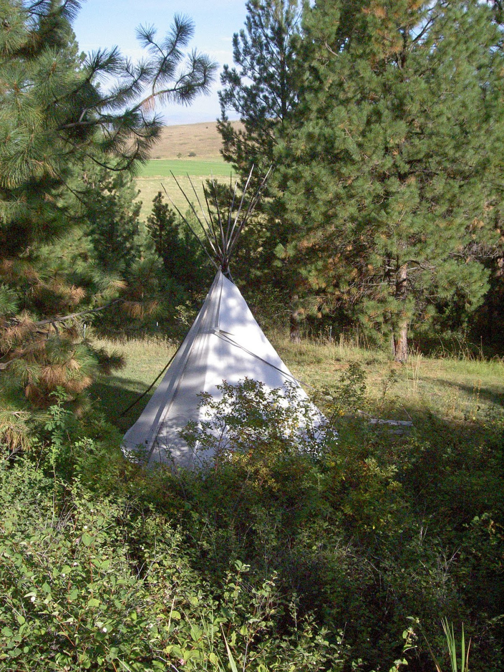 MT Bed and Breakfast Tipi Room