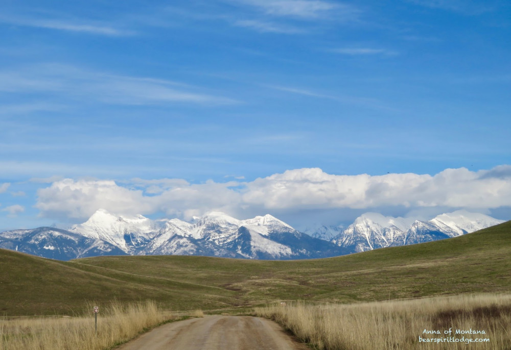 National Bison Range Lower Road toward Mission Mountains in the East