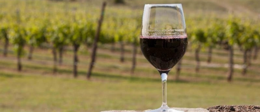 Wine Tasting Tips and Etiquette