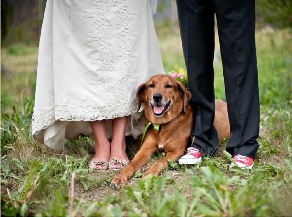 Laura & Fred's Wedding