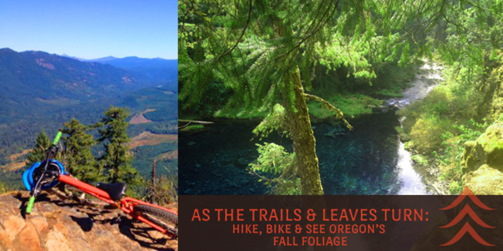 As the Trail and Leaves Turn: Bike, Hike & See Oregon's Fall Foliage