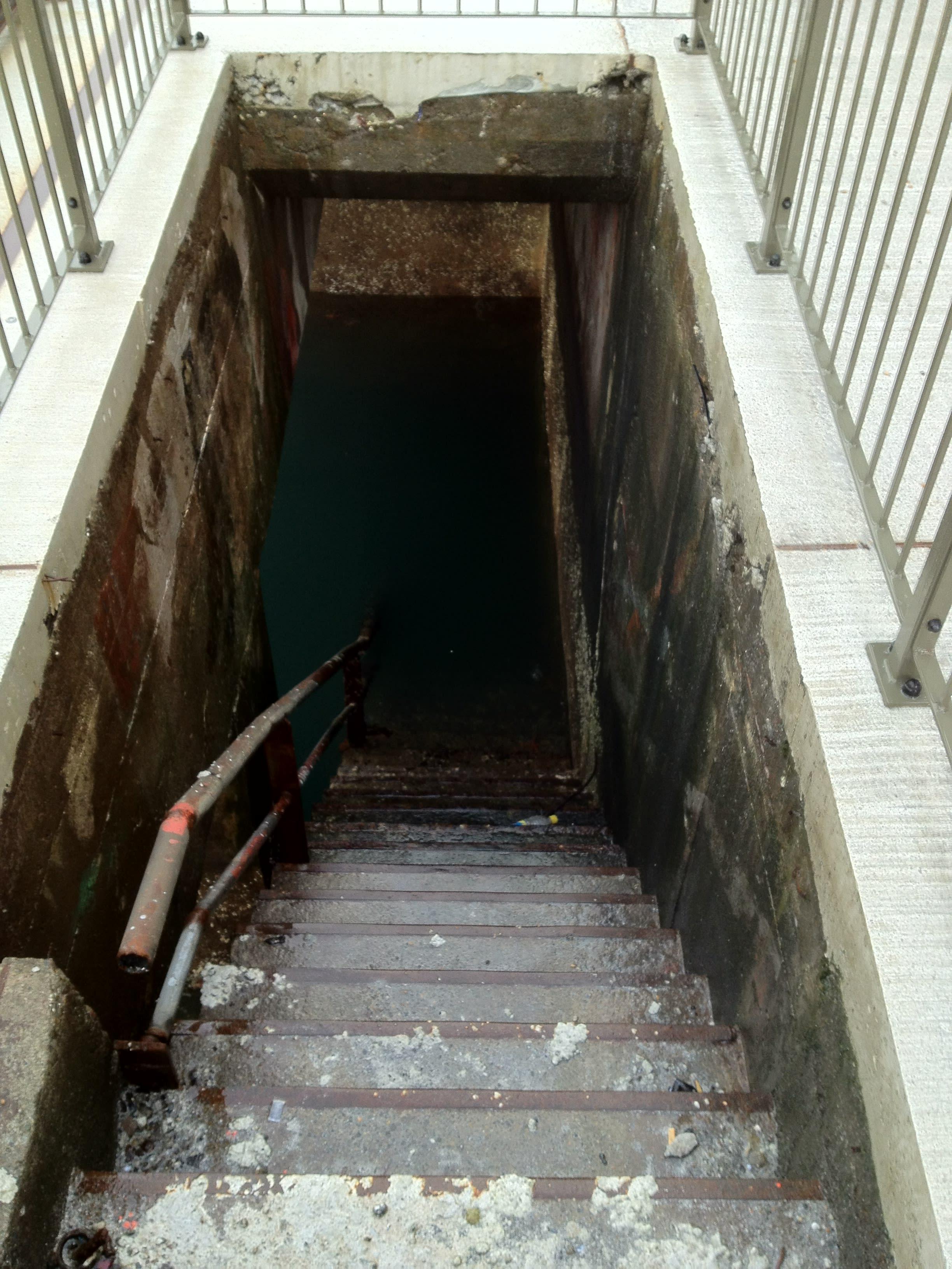 wet cellar